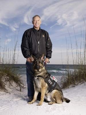 What Do Service Dogs Do For Epileptics